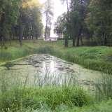 Прудик в парке у деревни Белкино