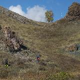 Гора Прыщ