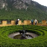 Фантан в виде лебедя в замке Хоэншвангау