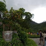 Двор замка Хоэншвангау