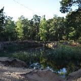 Пруд в парке Гагарина