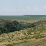 Ручей Дергаиш - место обитания лис